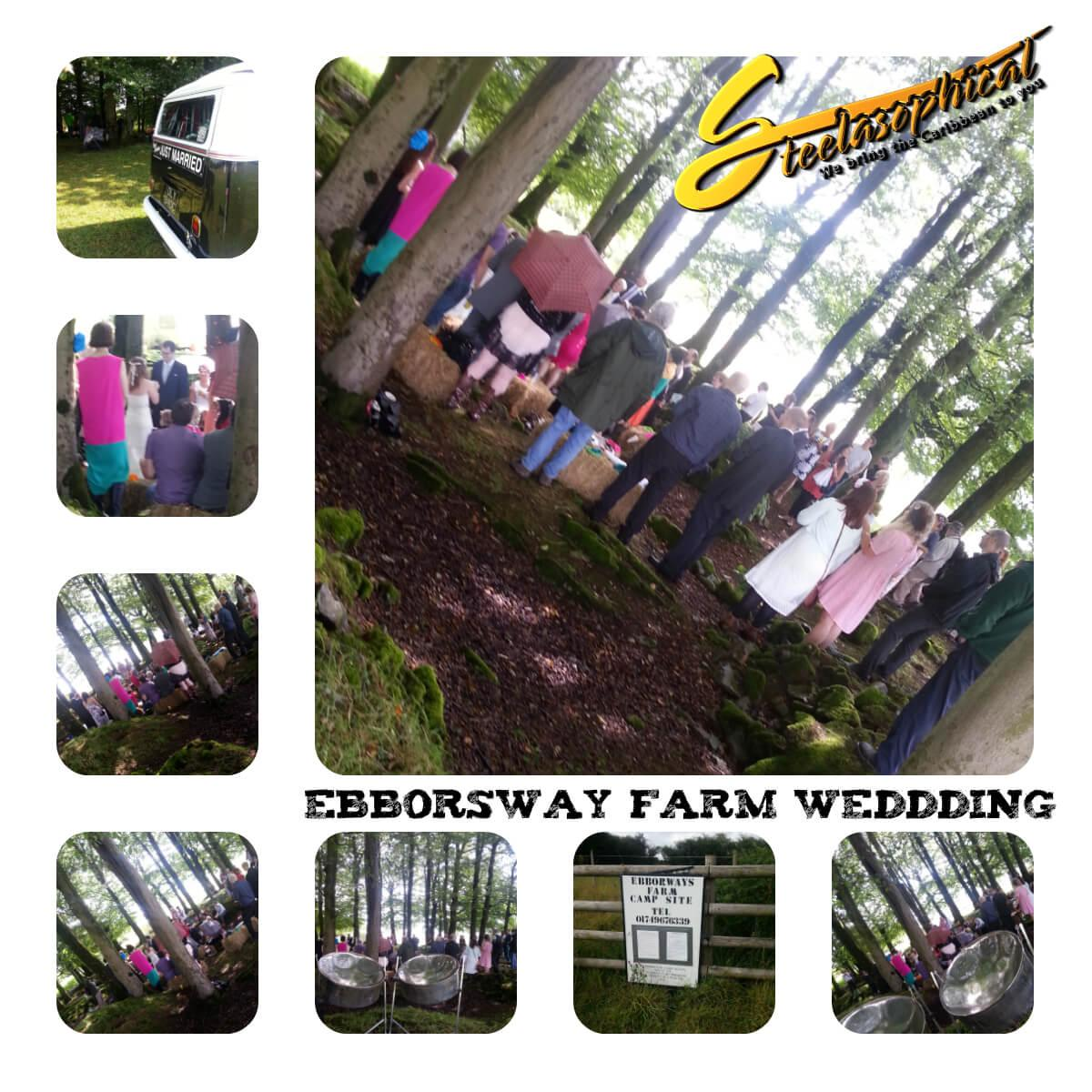 Steelband steelpan steeldrums steelasophical music hire uk Ebborsway Farm Wedding