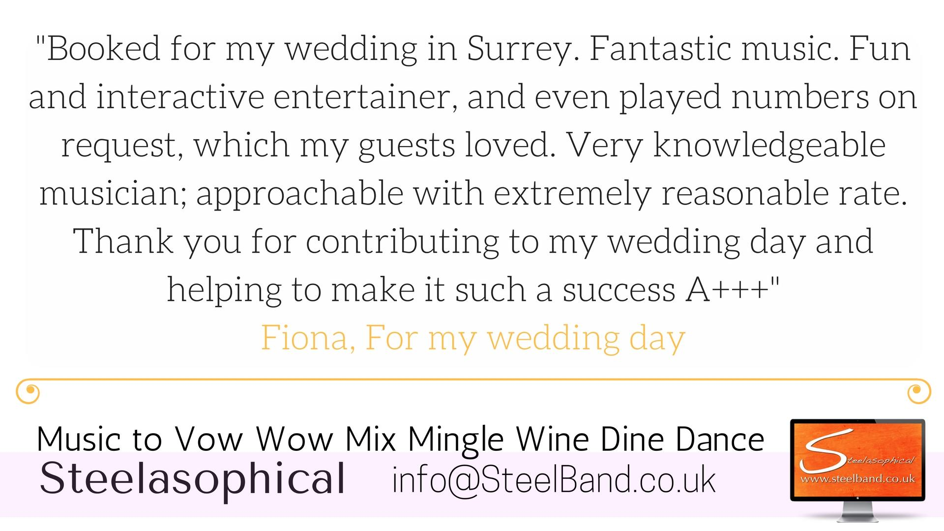 Steelasophical Wedding Steelband steelpan hire 0001