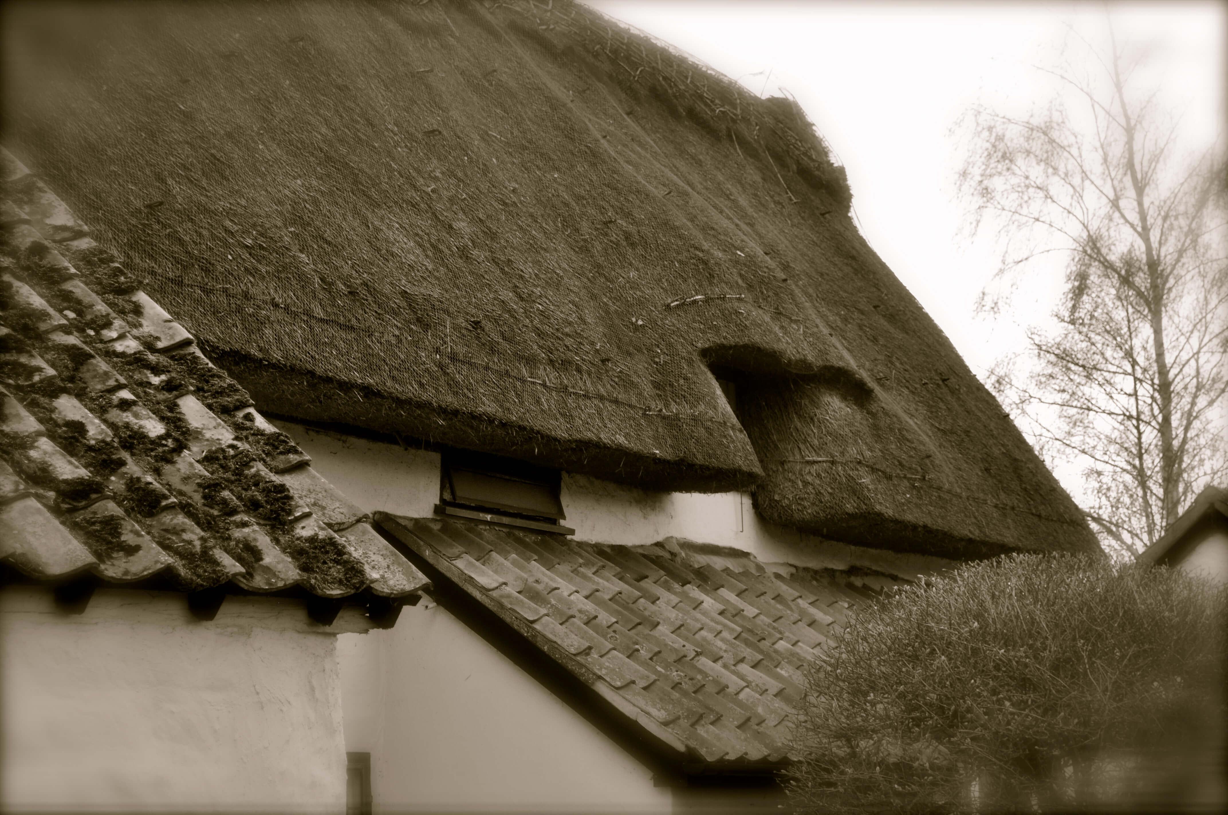 ASHWELL_village_GarytrotmanPhotoZ_001