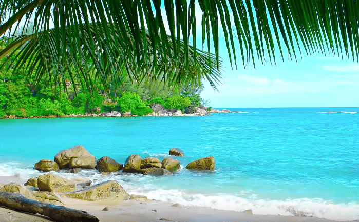 Caribbean Island Beach Ambience