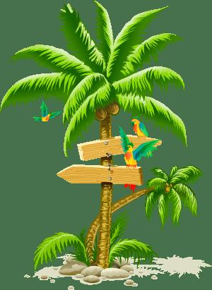 steelasophical steel band palm tree