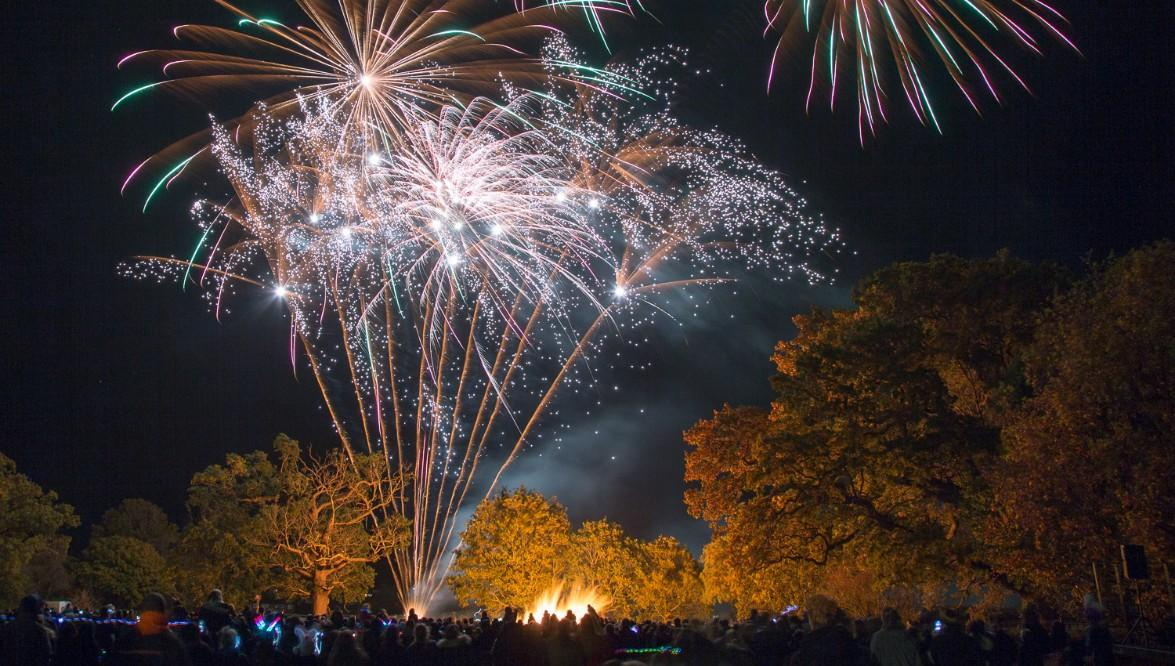 BENENDEN BONFIRE FIREWORKS Steelasophical steel band DJ